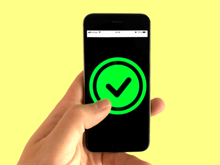 Image of a Smartphone with Green Check Mark on the Screen